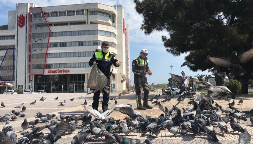 Aç Kalan Kuşlara Trafik Polisleri Yem Verdi
