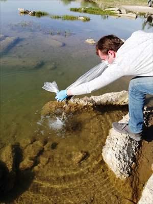 """Samsun'da """"Su Kaynaklarının Balıklandırılması Projesi"""""""