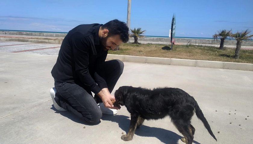 Alaçam`lı Gençler Sokak Hayvanlarını Unutmadı