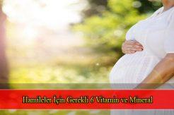 Hamileler İçin Gerekli 6 Vitamin ve Mineral