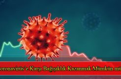 Koronavirüs'e Karşı Bağışıklık Kazanmak Mümkün mü?