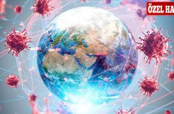 Corona Virüs Gelişimi Hakkında Teknik Araştırma