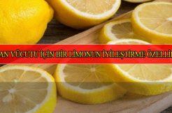 Limonun Yararları ve Zararları Nedir?