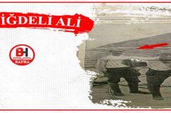 Çanakkale Savaşı Gizli Kahramanı Niğdeli Ali!