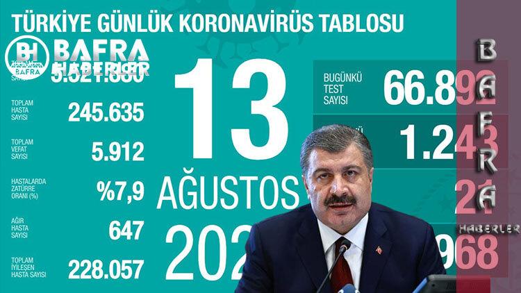 13 Ağustos 2020 Türkiye Günlük Koronavirüs Tablosu Yayınlandı