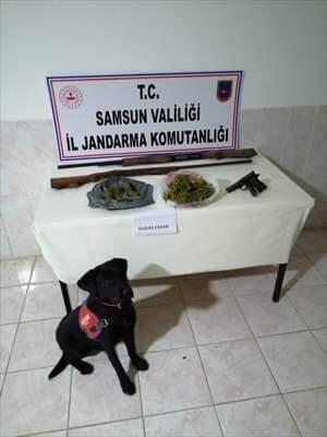 Bafra'da Jandarmadan Uyuşturucu Ve Silah Operasyonu