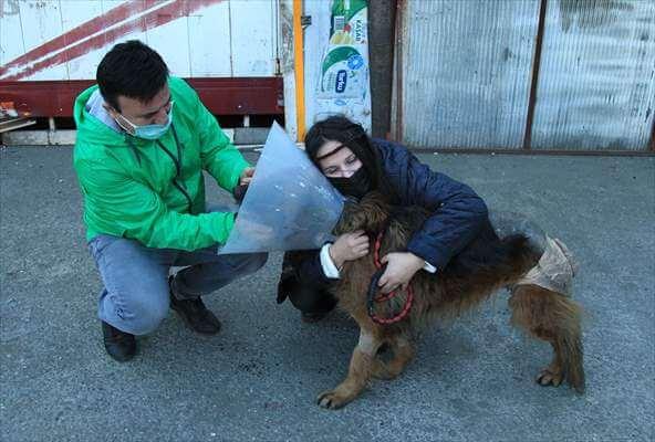 Köpeğini Ayağı Kesik Vaziyette Bulan Esnaf Şikayetçi Oldu