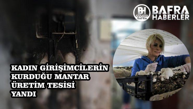 SAMSUN'DA KURULAN MANTAR TESİSİ YANDI