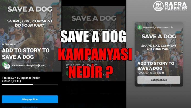 SAVE A DOG KAMPANYASI NEDİR ?