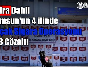 bafra dahil samsun'un 4 ilinde kaçak sigara operasyonu:33 gözaltı