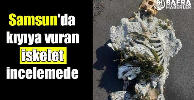 Samsun'da kıyıya vuran 1 iskelet incelemede