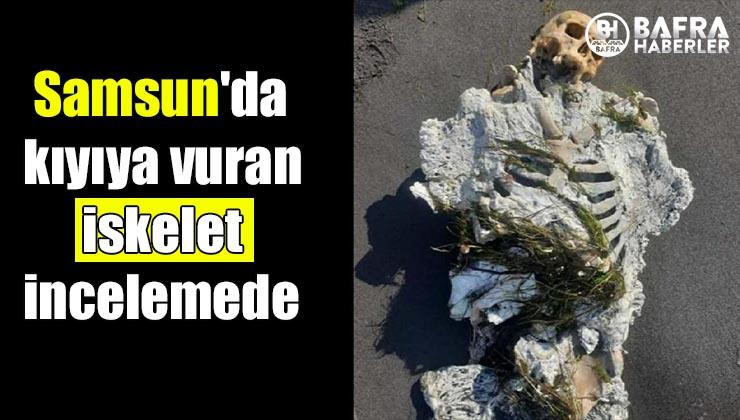 samsun'da kıyıya vuran iskelet incelemede