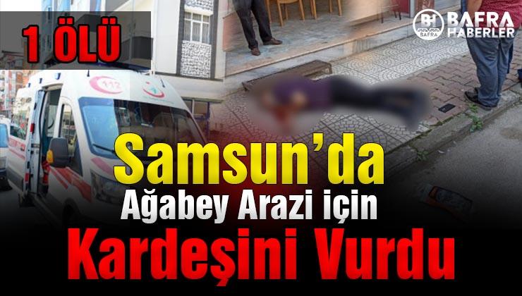 samsun'da kardeş kavgası: ağabey arazi için kardeşini vurdu 1