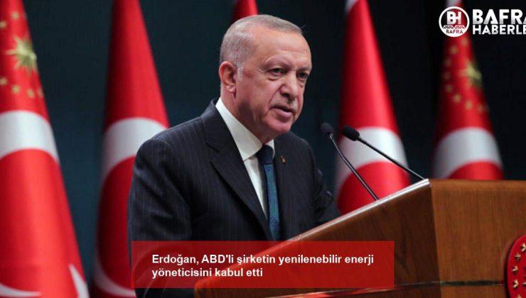 erdoğan, abd'li şirketin yenilenebilir enerji yöneticisini kabul etti