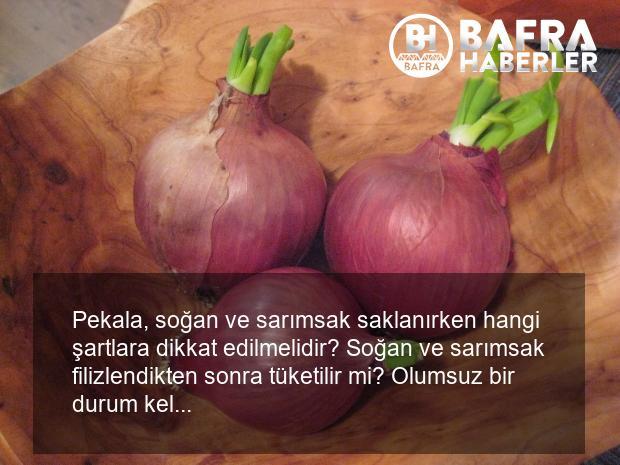 filizlenmiş soğan sarımsak yenir mi? filizlenmemesi için ne yapılmalı? 5
