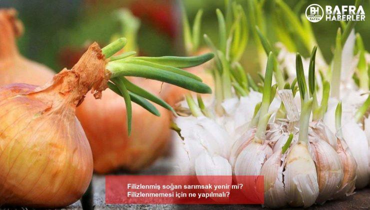 filizlenmiş soğan sarımsak yenir mi? filizlenmemesi için ne yapılmalı?