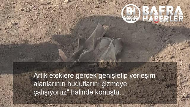 i̇kiztepe kazıları 9 yıl aradan sonra tekrar başladı 7
