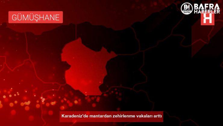 Karadeniz'de mantardan zehirlenme vakaları arttı