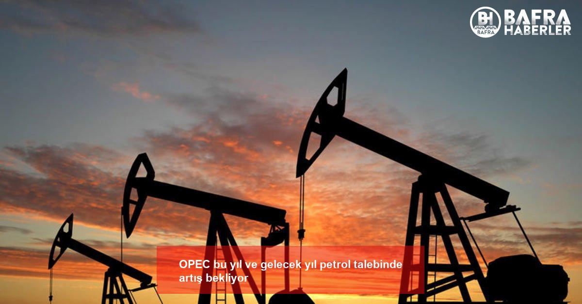 opec bu yıl ve gelecek yıl petrol talebinde artış bekliyor 2
