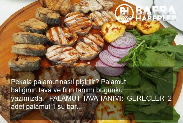 palamut balığı nasıl pişirilir? palamut balığının tavada ve fırında tarifi 5