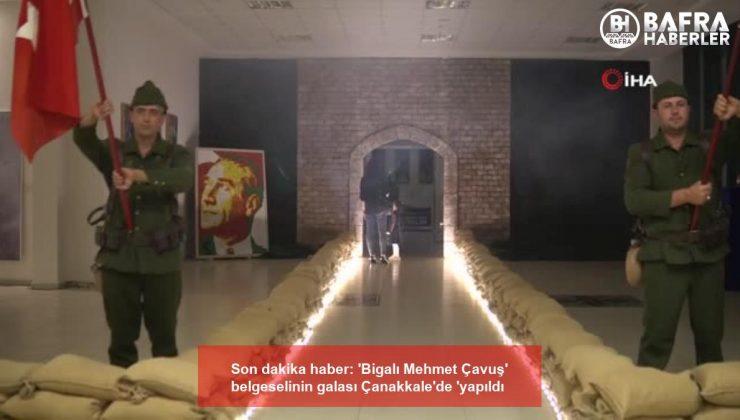 son dakika haber: 'bigalı mehmet çavuş' belgeselinin galası çanakkale'de 'yapıldı
